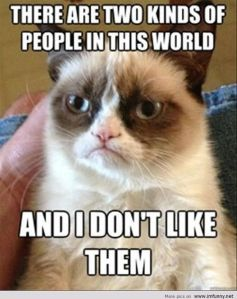 Funny-Cats-Top-49-Most-Funniest-Grumpy-Cat-Quotes-1