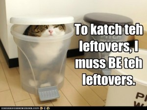 funny-cat-pictures-to-katch-teh-leftovers-i-muss-be-teh-leftovers