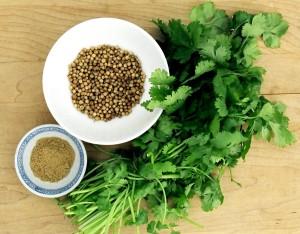 organic-coriander