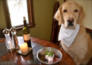 Raw food is okay for him but not for you - and not for kitties with IBD (it's a real thing!)